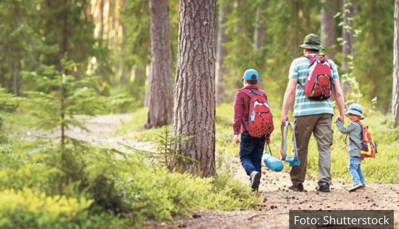 STABLA BUDUĆNOSTI: Šumu zasadi i neguj je!