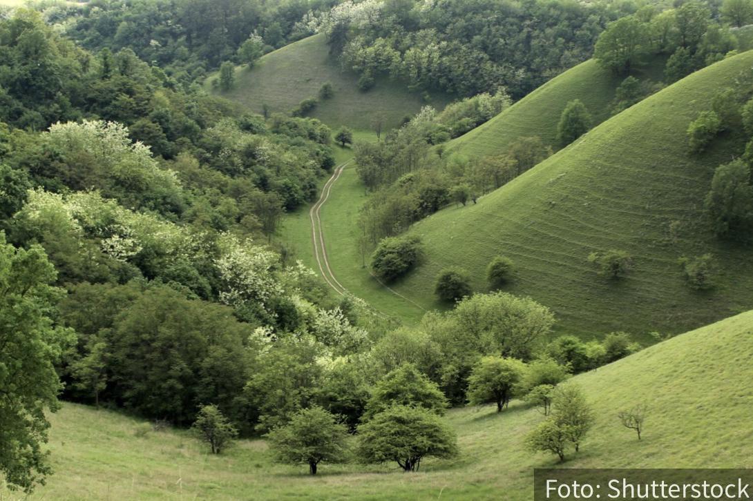 Pravo osveženje za turiste: NEVEROVATNE prirodne atrakcije u Srbiji koje morate da posetite (FOTO)