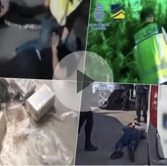 POGLEDAJTE MEĐUNARODNU POLICIJSKU AKCIJU NA 2 KONTINENTA: Zaplenjeno 2,6 tona kokaina i uhapšen 61 član krimi-grupe VIDEO