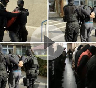 RUKE GORE, POLICIJA! Spektakularna akcija hapšenja u Novom Sadu za ubistvo MMA borca (VIDEO)