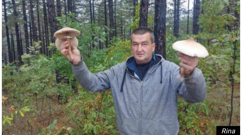 Srpski prirodni delikates bolji od tartufa! Na padinama Ravne Gore rastu specifične gljive sunčanice i puhare!